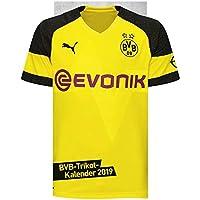 Borussia Dortmund Trikotkalender - Kalender 2019