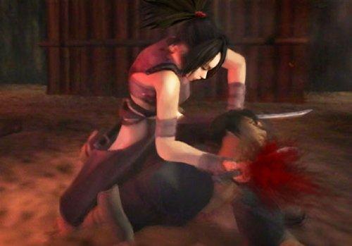 Tenchu: Fatal Shadows by Sega (Image #3)