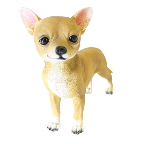 Amazon com: Largemouth Chiquito Chihuahua Dog Puppy