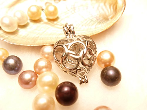 Born Oyster (10 Akoya Oysters with Pearls and 10 Heart Pendants)