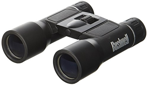 Bushnell Powerview 8x21 Compact Folding Roof Prism Binocular (Black) (Renewed)
