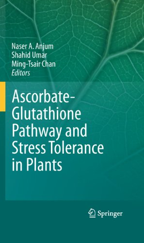 Ascorbate-Glutathione Pathway and Stress Tolerance in Plants (Ascorbate Glutathione Pathway And Stress Tolerance In Plants)