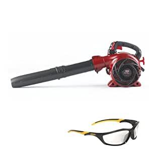 The Set Safety Glass with Craftsman 25cc 210mph / 450 Cfm Gas Blower