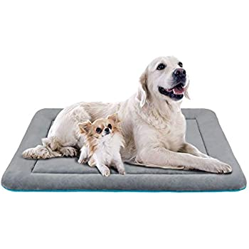 Amazon Com 54l Inch Gray Dog Bed Or Cat Bed W