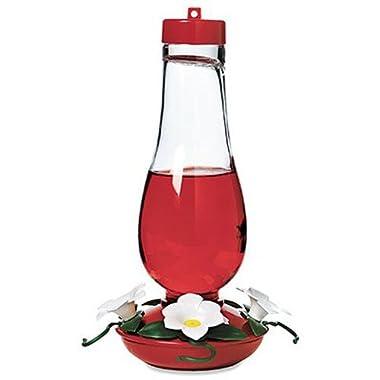 Audubon Glass Hummingbird Feeder, 24-Ounce