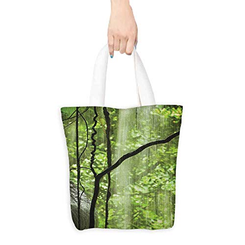 - Reusable Shopping Grocery Bags,Rainforest Jungle View with Waterfall Rocks and Trees Natural Beauty in Wild Atmosphere,Reusable Grocery Bags,16.5
