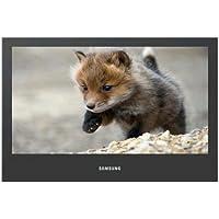 46 8MS 768 LCD Window Display