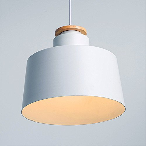 Pendant Light Bulb Shield in US - 9