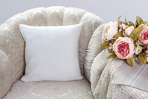 Continental Bedding Luxurious 26-by-26 Inch 50% White Goose Down and 50% Goose Feather Euro Pillow, White 50% Down 50% Feather
