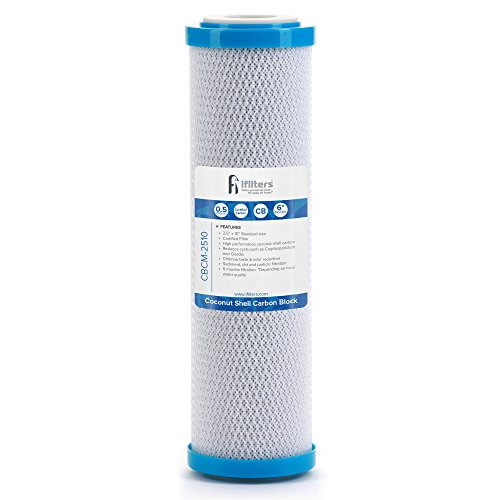 Coconut Shell CTO, Cyst Carbon Block Drinking Water Filter, 2.5 x 10, 0.5 micron by iFilters