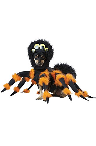 [California Costume Collections PET20149 Spider Pup Dog Costume, Small] (Party City Animal Costumes)
