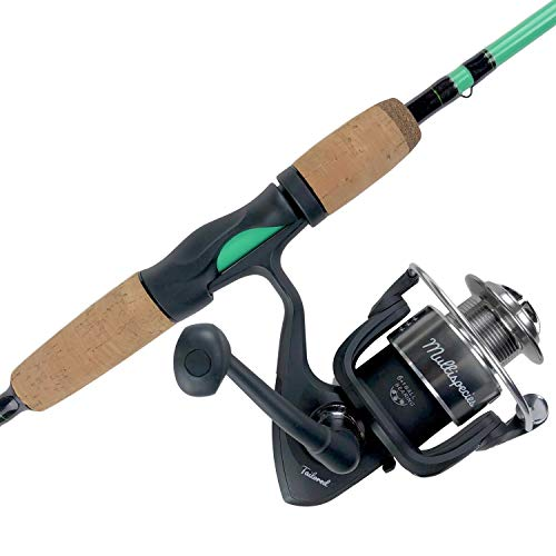 (Tailored Tackle Universal Multispecies Rod and Reel Combo Fishing Pole | Freshwater & Inshore Saltwater | Poles 6 Ft 6 in Rods Medium Fast Action | Spinning Reels 7BB | Combos L & R Handed)