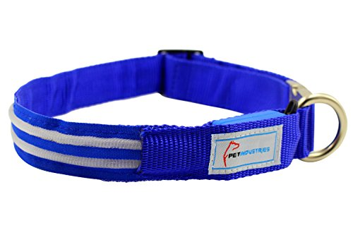 Picture of Pet Industries Metal Buckle LED Dog Collar, USB Rechargeable, Available in 7 Colors & 4 Sizes (Medium [15-21.5