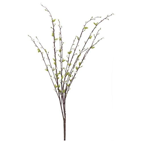 dried-pussy-willow-branches-for-sale-langton-naked