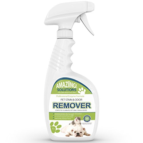 Delicieux Amazon.com: Amaziing Solutions Pet Odor Eliminator And Stain Remover Carpet  Cleaner For Dog Urine And Cat Pee, Professional Strength Enzymatic  Solution, ...