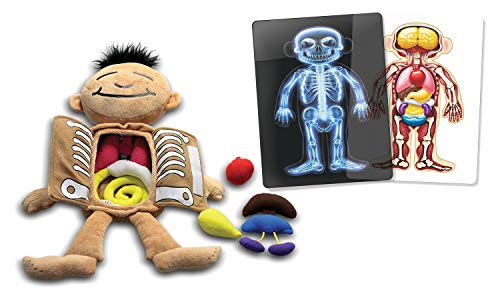 Roylco What's Inside Me Doll and X-Ray - Toys X Kids Ray Discovery