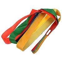 Mydio 12 Pack Rainbow Ribbon Rhythm Ribbon Dance For Kid