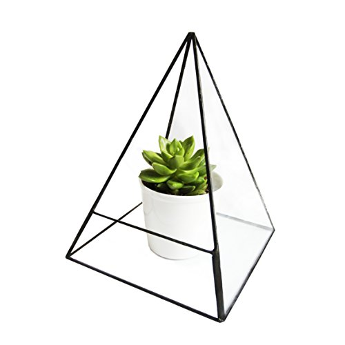 geometric-modern-pyramid-tabletop-glass-succulent-plant-terrarium-box-air-plant-cacti-holder-case