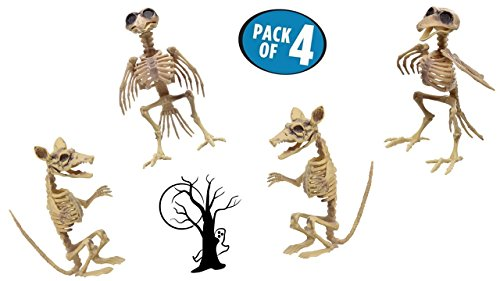 TopNotch Outlet Halloween Skeleton - Plastic Skeleton - Rat Skeleton - Crazy and Creepy Halloween Skeletons That Don't Always Have to Be Human - Skeleton Raven - Halloween Decorations -