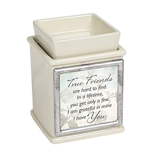 - Elanze Designs True Friends are Hard to Find Sand Interchangeable Print Candle Wax and Oil Warmer