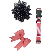 Bow & Arrow Pet Soiree Fancy Dog Collar With 1 Bow Slide and 1 Flower Slide, Large, Coral