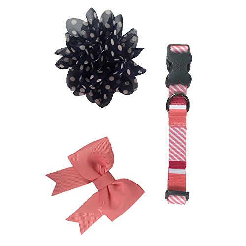 Fancy Dog Bows (Bow & Arrow Pet Soiree Fancy Dog Collar With 1 Bow Slide and 1 Flower Slide, Medium, Coral)