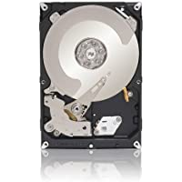 Seagate Barracuda Green 1 TB 5900 RPM SATA 3Gb/s 32MB Cache 3.5 Inch Internal Bare Drive ST1000DL002