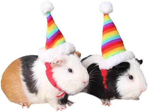 zuckerti sombrero gorro para Fiesta Día Halloween Navidad ...