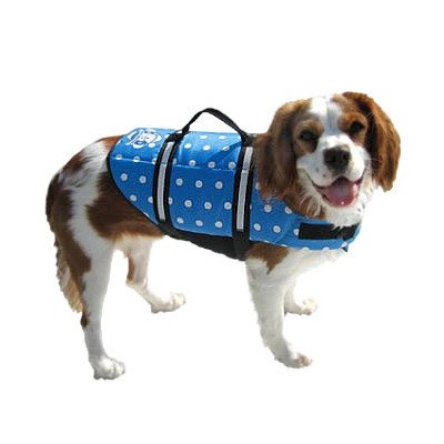 Designer Dog Life Jacket in Blue Polka Dot Size: XX-Small (Dogs up to 6 lbs)