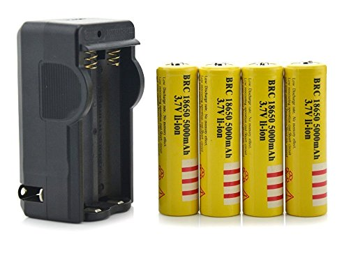 3.7V 4pcs E-shinre 18650 5000mAh Rechargeable Lithium Li-Ion Battery + Charger Combo