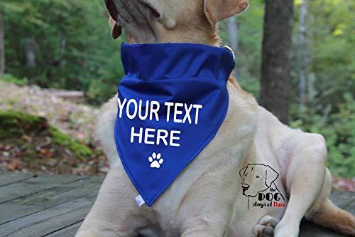 I CoCo For You Over the Collar Dog Bandana