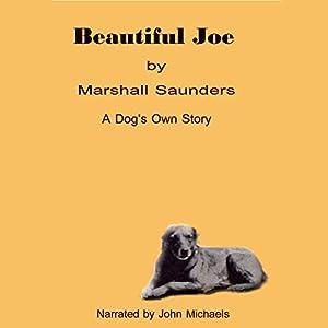 Beautiful Joe Audiobook