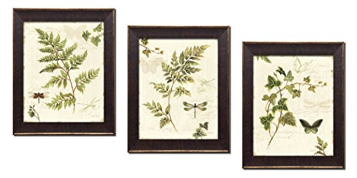 Gango Home Decor Classic Green and Brown Botanical Leaves, Dragonflies and Butterflies Set by Lisa Audit; Three 8x10in Gold Trim Brown Framed ()