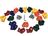 NOSTAFY 20 Pcs Pig Nose Shape Rock Climbing Holds Outdoor Wooden Play Set Accessory Exercise Toy - Hardware Kit Included