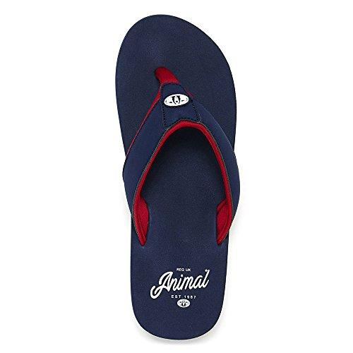 Animal Bazil Flip-Flops - Dark Navy UK 8