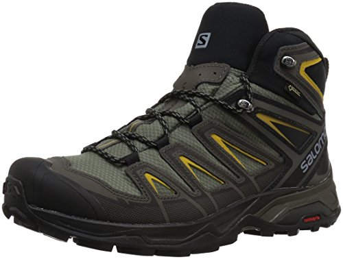 Salomon Men's X Ultra 3 Mid GTX Hiking Boot, Castor Gray, 10.5 M US