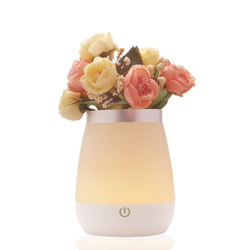 Floomsun Flower Atmosphere Rechargeable Friends product image
