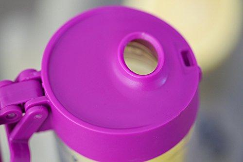 0304416949 Glasstic Shatterproof Glass Water Bottle - 16oz - Double Walled - Flip Cap  Sports Water Bottle
