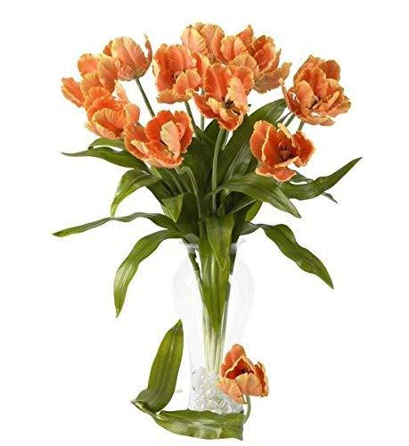 Tulip Parrot Stem (SKB Family 23