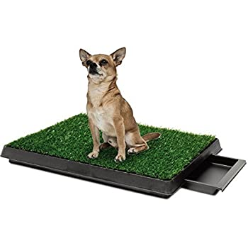 Amazon Com Topiastore Indoor Pet Toilet Dog Grass