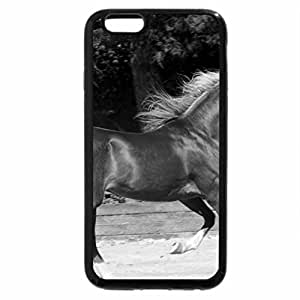 iPhone 6S Plus Case, iPhone 6 Plus Case (Black & White) - Gold Horse 2