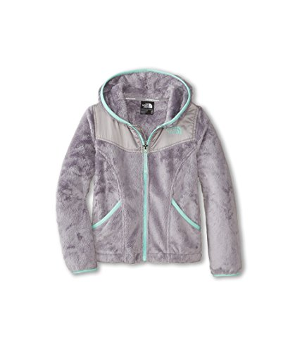 The North Face Oso Hoodie Girls Metallic Silver XXS5