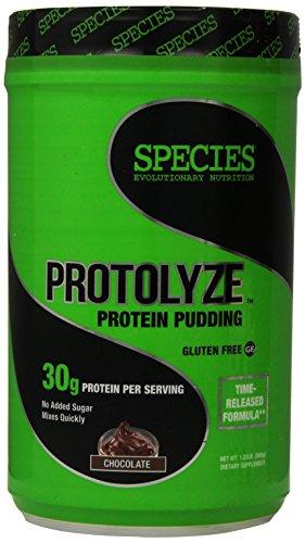 Species Nutrition Protolyze, Chocolate, 1.23 Pound