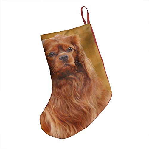 """FRS Ltd Cavalier King Charles Spaniel Christmas Stocking 18"""" Big Classic Stockings Gift Bags Snowman Personalized Party Decorations"""