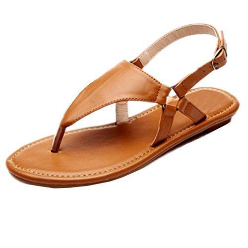 Playa No 36 Ding Nuevas Las Ocio Planas Femeninas Deslizamiento Sandalias Palabra De Zapatos Bw6AqOX7