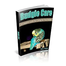 Budgie Care: A Complete Guide For Caring For Your Budgie