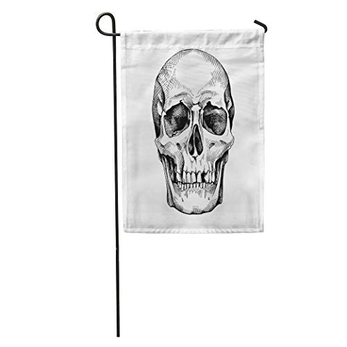(Semtomn Garden Flag Engraving Frontal of The Skull Drawing Anatomy Black Bone Brutal Home Yard House Decor Barnner Outdoor Stand 28x40 Inches Flag)