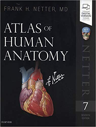 Atlas Of Human Anatomy Netter Basic Science 8600007152881