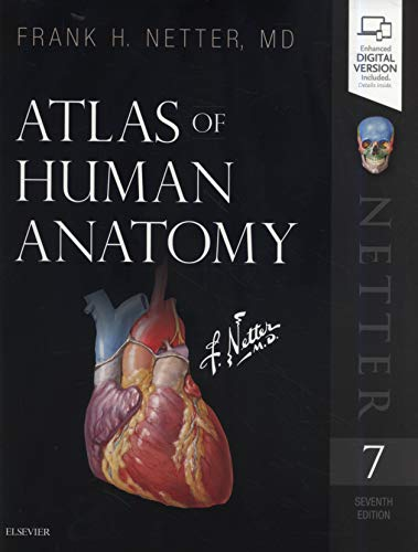 Atlas of Human Anatomy (Netter Basic Science) (English Structure Practices)