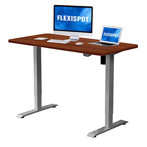 Flexispot Electric Height Adjustable Desk Sit Stand Desk 48 X 30 Inches Whole Piece Desk Board Home Office Table Stand Up Desk Gray Frame 48 In Mahogany Top